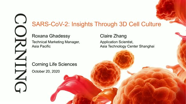 SARS-CoV-2: Insights Through 3D Cell Culture
