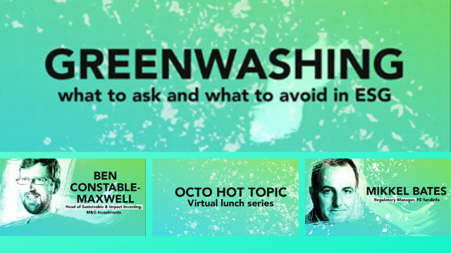 HOT TOPIC Greenwashing – what to ask and what to avoid in ESG
