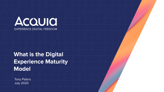What is Digital Experience (DX) Maturity Model?