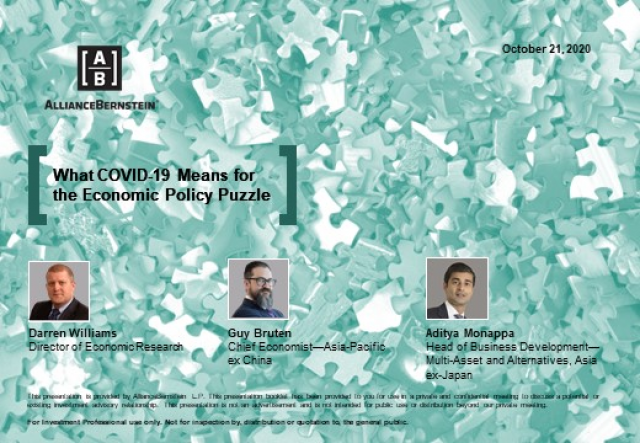 What COVID-19 Means for the Economic Policy Puzzle