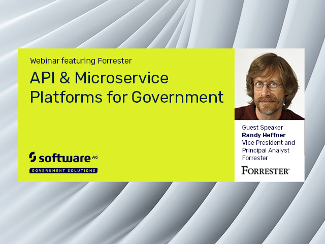 API & Microservice Platforms for Government