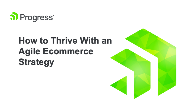 How to Thrive with an Agile Ecommerce Strategy