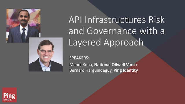 API Infrastructures Risk and Governance with a Layered Approach