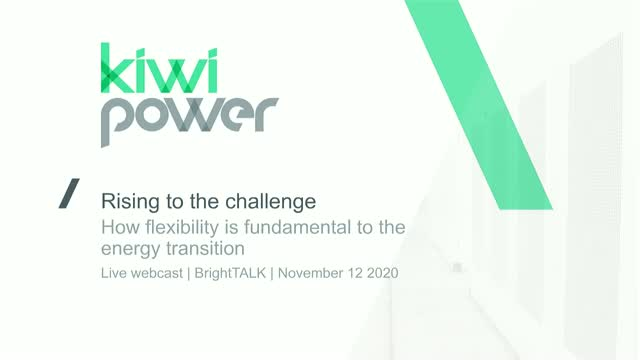 Rising to the challenge: how flexibility is fundamental to the energy transition
