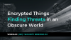 Encrypted Things: Finding Threats in an Obscure World