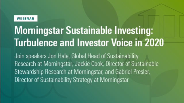 Turbulence and Investor Voice in 2020