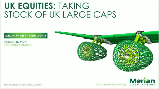 Taking Stock of UK Large Caps