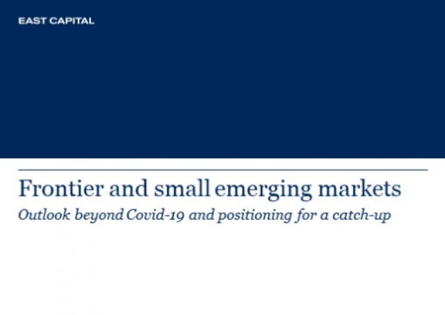 Frontier and smaller emerging markets