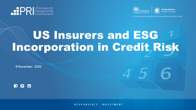 US Insurers and ESG Incorporation in Credit Risk