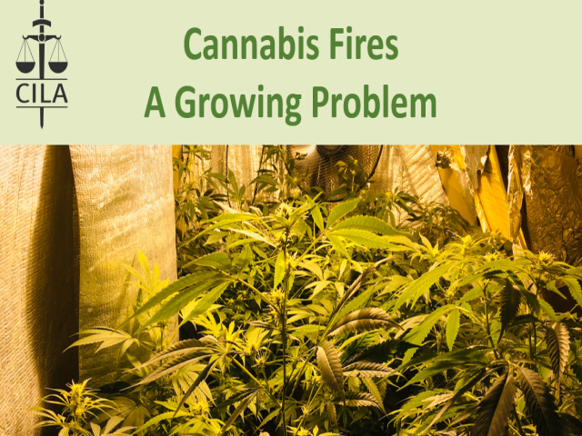 Cannabis Fires - A Growing Problem
