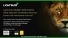Liontrust Views - What does the US election mean for bonds & investment returns