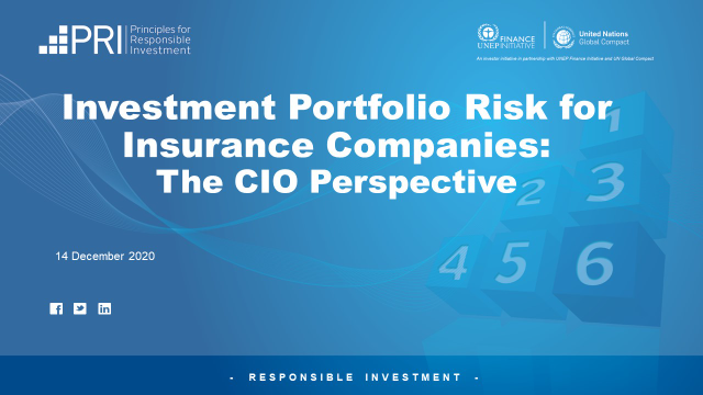 Investment Portfolio Risk for Insurance Companies - The CIO Perspective