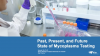 Mycoplasma Testing:  Past, Current, and Future State