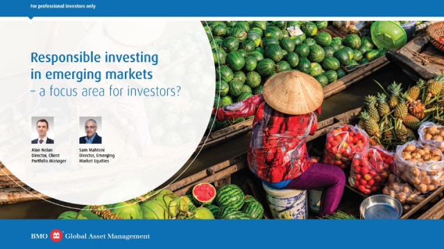 Responsible investing in emerging markets – a focus area for investors?