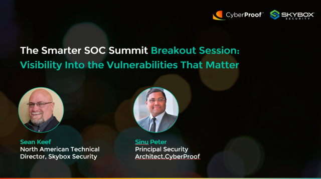 Visibility Into the Vulnerabilities That Matter