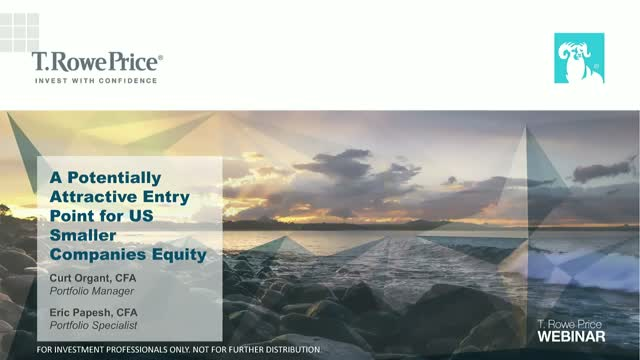 A Potentially Attractive Entry Point for US Smaller Companies Equity