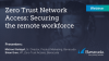 Zero Trust Network Access: securing the remote workforce