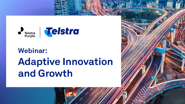 Adaptive Innovation, Infrastructure and Growth