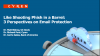 Like shooting Phish in a Barrel:  3 Perspectives on Email Protection