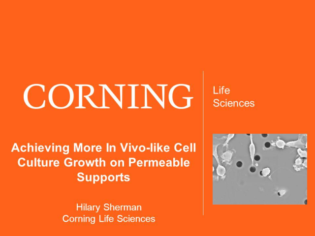 Achieving More In Vivo-like Cell Culture Growth on Permeable Supports