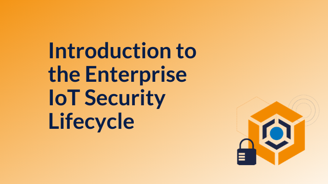 Introduction to the Enterprise IoT Security Lifecycle