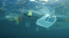 Plastic pollution: what solutions?