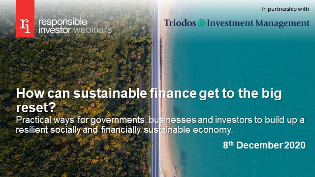 How can sustainable finance get to the big reset?