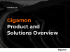 Gigamon Product & Solutions Overview