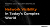 Network Visibility in Today's Complex World