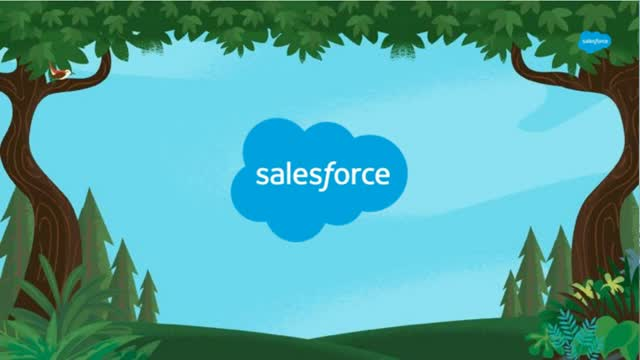 Salesforce Essentials Live Demo