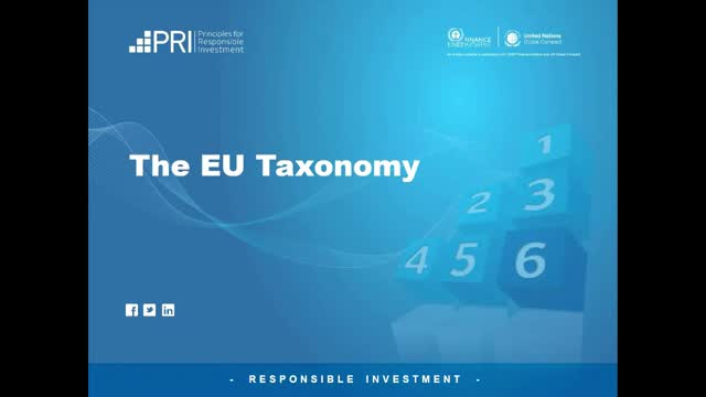 EU Taxonomy and Implications for Chinese Investors