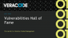 Vulnerabilities Hall of Fame