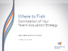 Where to Fish: Optimization of Your Talent Acquisition Strategy