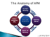 The Anatomy of APM – 4 Foundational Elements to a Successful Strategy