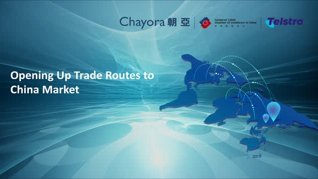 How IT professionals in Europe can best capitalize on the opportunity in China?
