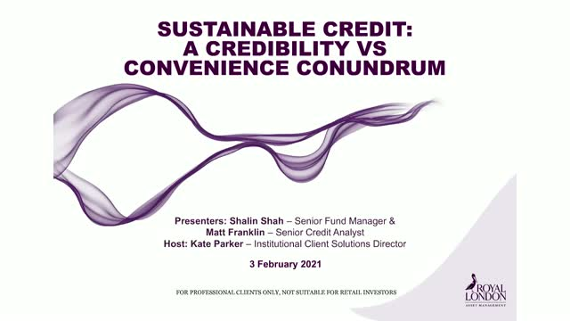 Sustainable Credit: a credibility vs convenience conundrum