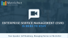 Enterprise Service Management (ESM) is Here to Stay