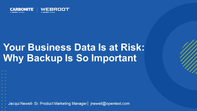 Your Business Data Is at Risk: Why Backup Is So Important