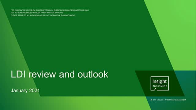 LDI review and outlook | January 2021