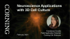 Neuroscience Applications with 3D Cell Culture