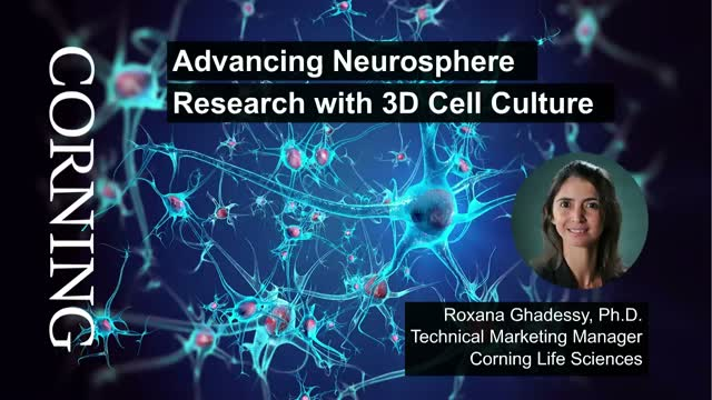 Advancing Neurosphere Research with 3D Cell Culture