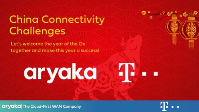 Chinese Connectivity Challenges (German Speaking Webinar)