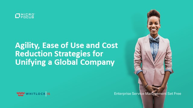 Agility, Ease of Use and Cost Reduction strategies for unifying a global company