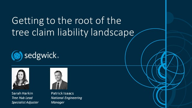 Getting to the root of the tree claim liability landscape