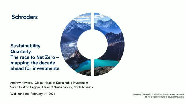 Sustainability Quarterly: The Race to Net Zero – mapping the decade ahead