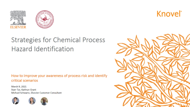 Strategies for chemical process hazard identification