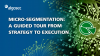 Micro-Segmentation: A Guided Tour from Strategy to Execution