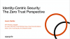 Identity-Centric Security: The Zero Trust Perspective