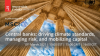 Central banks: driving climate standards, managing risk, and mobilizing capital