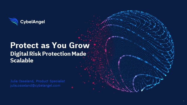 Protect as You Grow: Digital Risk Protection Made Scalable